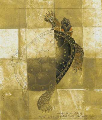 spotted-turtle-gold-ground2