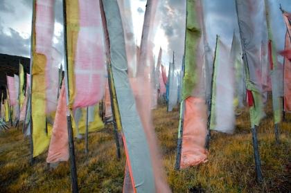 prayer flags larry louie